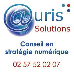 logo-auris-tel